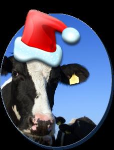 Xmas Cow